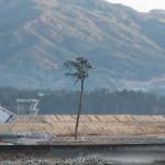 東日本大震災の時、年パスの期限はどう対応されたのか?